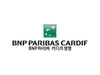 CyberArk_BNP파리바카디프생명
